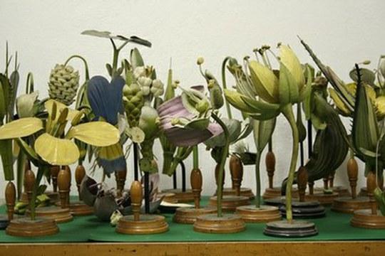 I modelli Brendel dell'Orto Botanico approdano al FrameLAB di Ravenna
